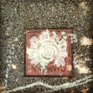 This is an image of the Nahua glyph for enery and movement, called ollin. It is carved into a terracotta-like substance on a sidewalk. Paint has fallen onto it, making the lines stand out.
